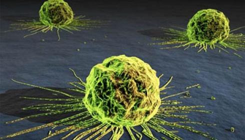 Bahan kimia anti panas dapat menimbulkan penyakit kanker