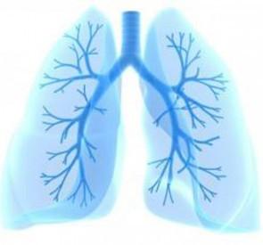 Penyakit Idiopatik Interstisial Pneumonia