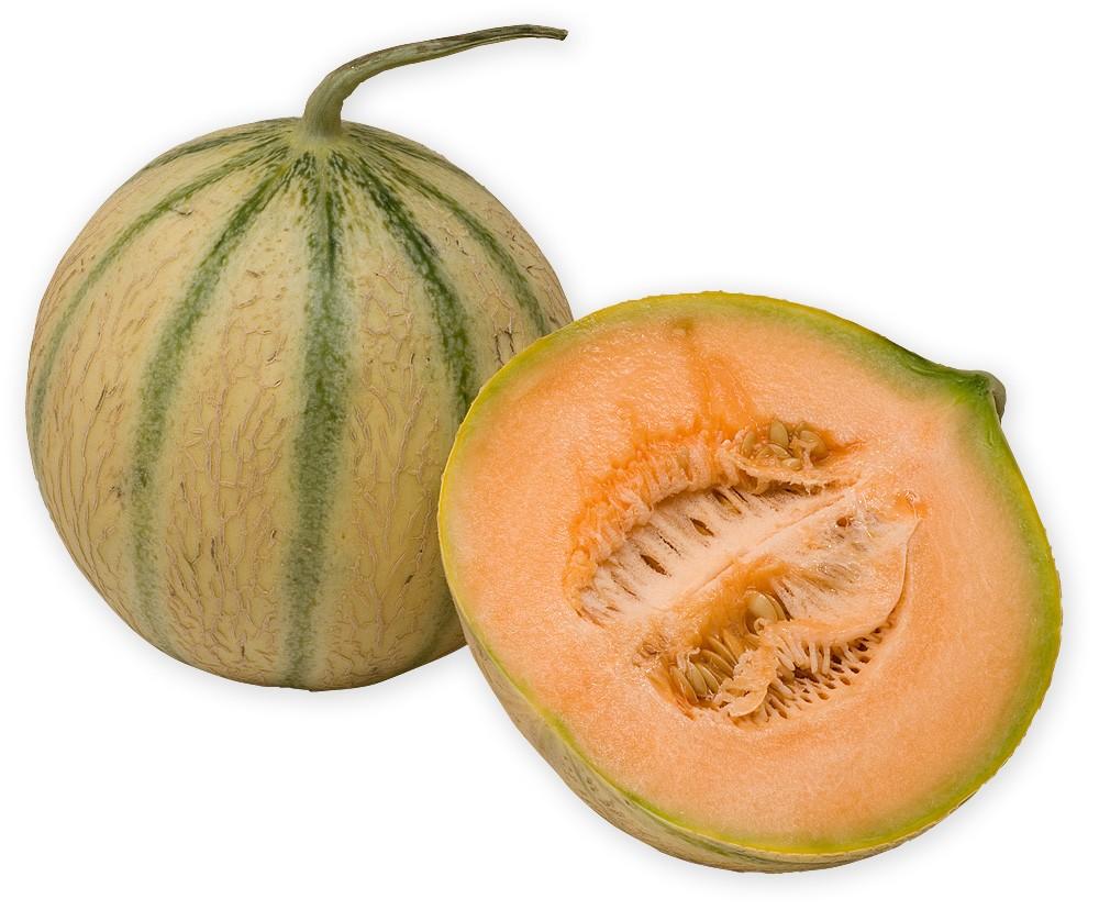 6 Manfaat Buah Melon