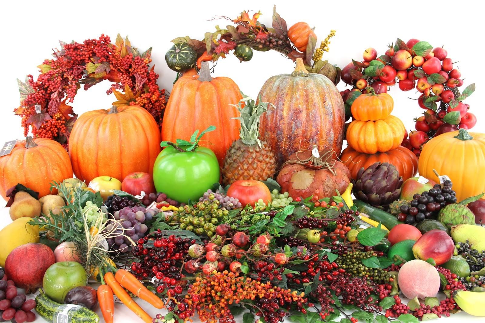 Manfaat Dan Fungsi Vitamin Bagi Tubuh