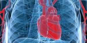 Kelainan Pada Jantung Manusia