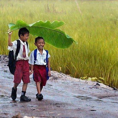 Perjuangan Bocah yang Rela di Guyur Hujan Demi Pendidikan