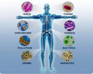 Mengetahui Tentang Penyakit Alergi dan Imunologi